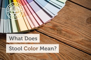 Stool color can be a great indicator of what's going on inside of you.