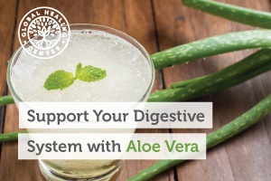 A glass of aloe vera juice with an aloe leaf laying next to it. Aloe vera offers many nutrients and properties that aid digestion.