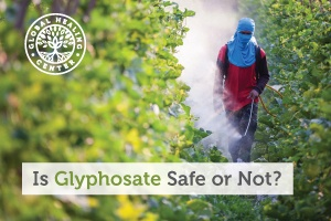 A gentleman is spreading toxic herbicides on the field called Glyphosate. It's the active ingredient in Roundup weed killer.