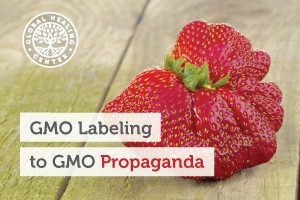 This unusual strawberry is a genetically modified food. Learn how our government went from GMO labeling to GMO propaganda in just 2 months.