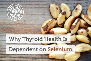 Brazil Nuts are high in the Selenium essential mineral which supports thyroid health.