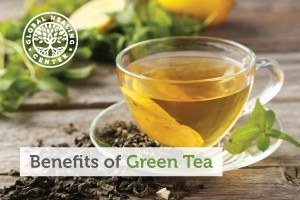 Cup of green tea with leaves around it. Green tea possesses great benefits for your health.