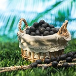 12 Health Benefits of Acai Berries