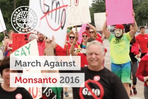 A group of activists in Houston Texas holding signs in the 2016 March Against Monsanto.