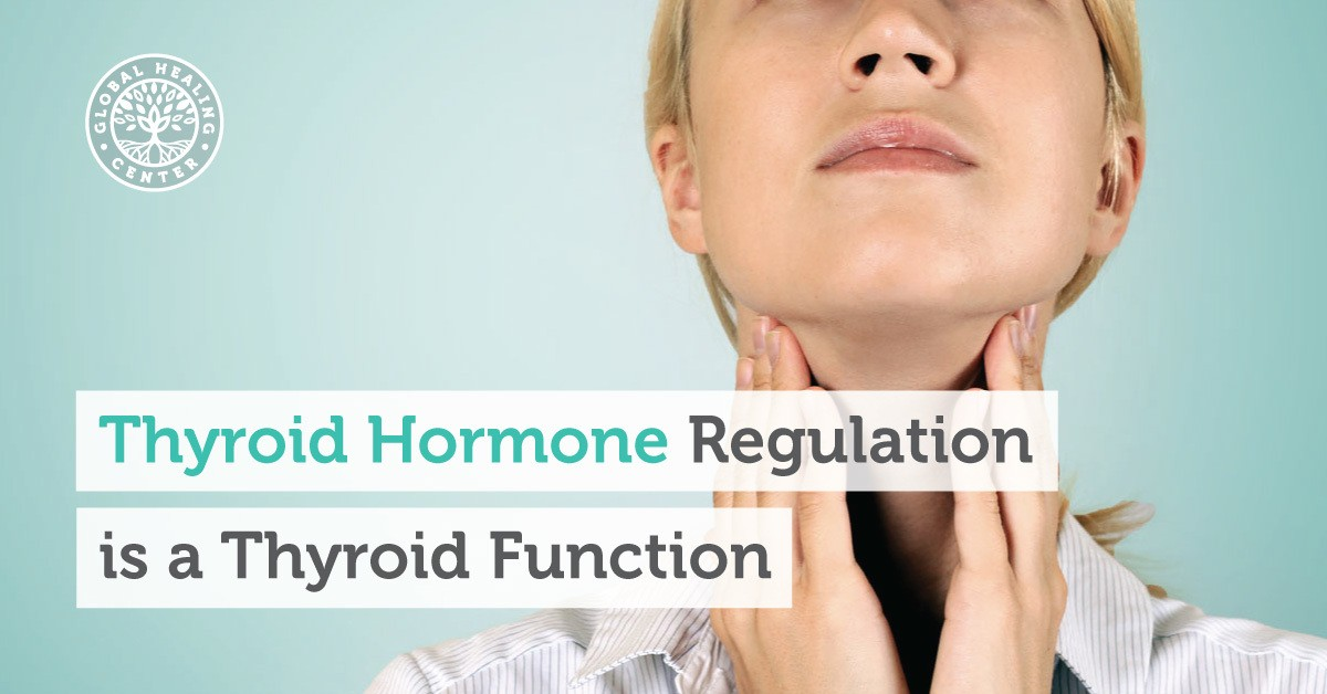 Thyroid Hormones Mastering The Importance Of The Thyroid