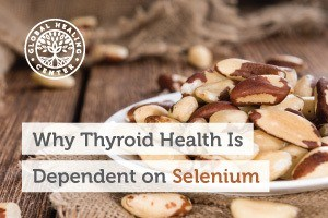 A plate is full of Brazil nuts. These nuts are high in the selenium which is an essential mineral that supports thyroid health.