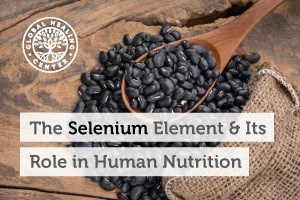 A wooden spoon filled with coffee beans. The Selenium Element was first discovered by Jöns Jakob Berzelius from Sweden.