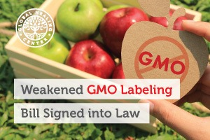 A box of organic green and red apples. One compromise in the new GMO labeling bill will allow companies to hide GMO information behind QR codes.