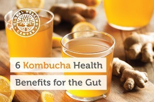 Two glasses of kombucha. Kombucha is made from bacterial colonies and holds a significant amount of live probiotic strains.
