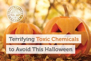 Two carved pumpkins. Toxic chemicals can be found in Halloween costumes, accessories, and decoration.