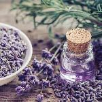 Best Essential Oils and Their Benefits