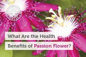 A Passion Flower. This amazing herb has been used for its health benefits for hundreds of years.