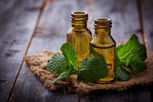 Two bottles of peppermint oil with peppermint leaves around them.