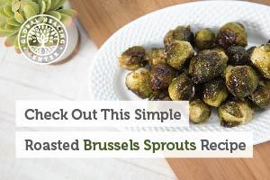 A plate of organic roasted brussels sprouts. This vegan recipe provides plenty of nutrients such as Vitamin C and Vitamin K.