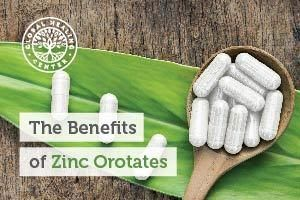A table is full of Zinc Orotates supplements. Zinc Orotate is a mineral salt found in the human body in trace amounts.