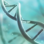 What Is the MTHFR Genetic Defect and How Can it Affect You?
