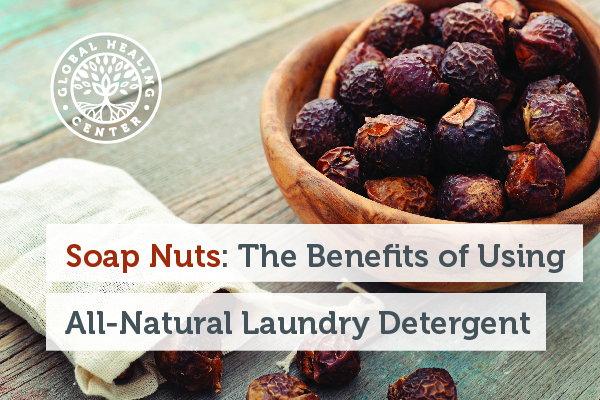 A bowl of soap nuts. Soap nuts are useful in the remediation of contiminated soil and extremely useful in treating lice.