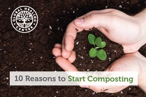 A person holding soil in their hand. Composting is one way that we can give back to our natural world.