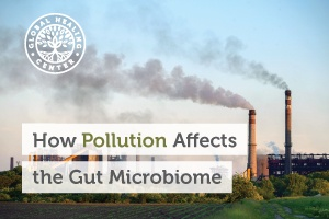 Pollution from factories could alter the gut microbiome.
