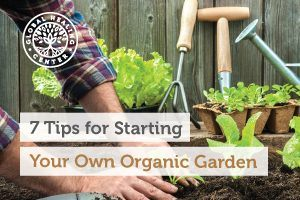 Having your own organic garden enables you to eat the freshest fruits, herbs, and vegetables.