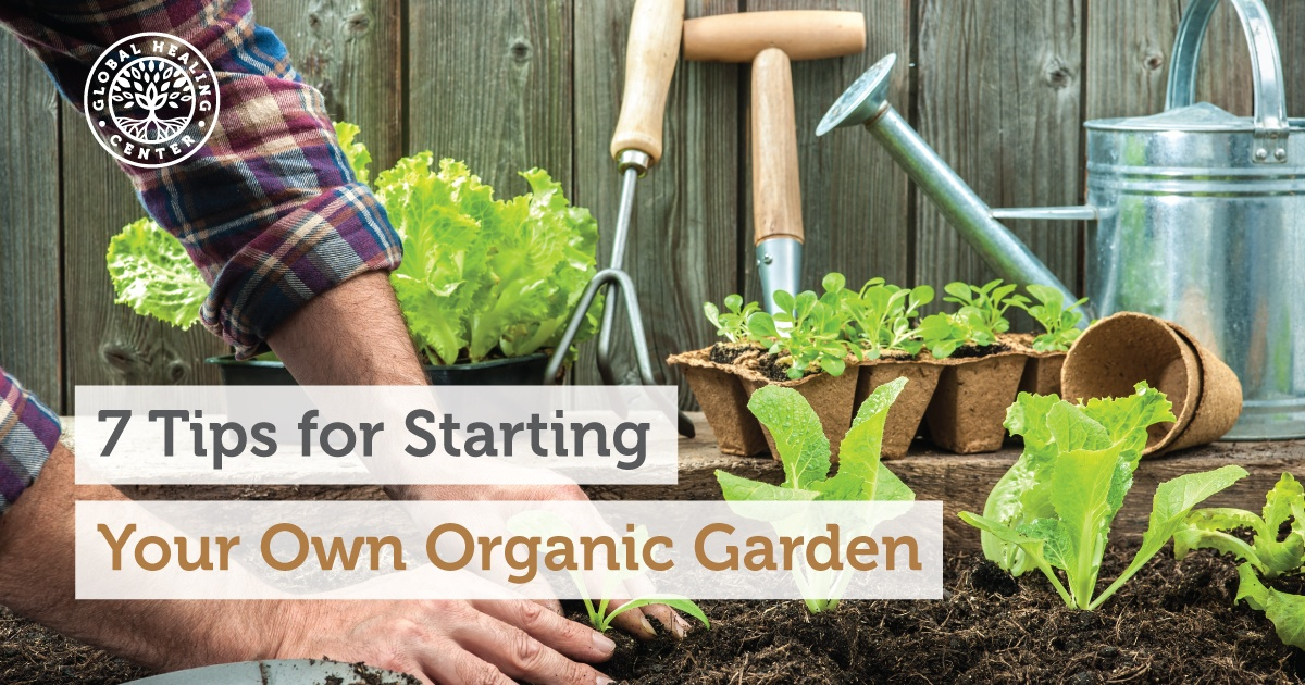 7 Tips For Starting Your Own Organic Garden, Tips For Starting A Garden