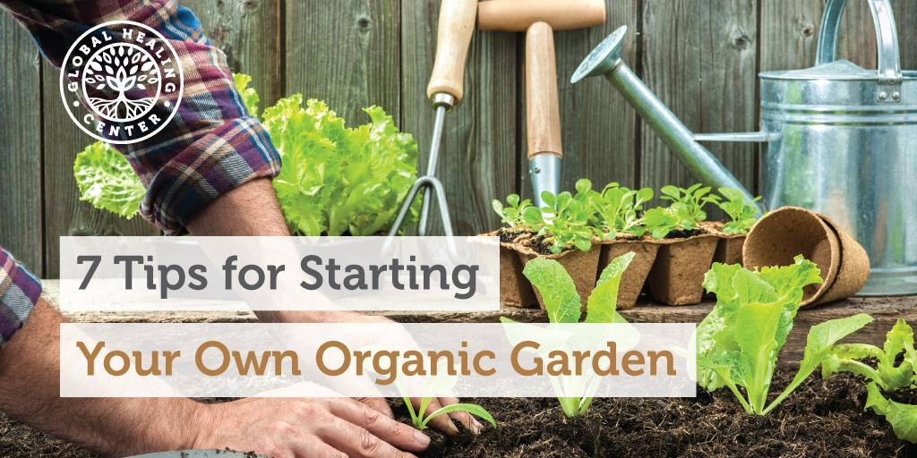 How To Start Your Own Organic Garden akalaircom