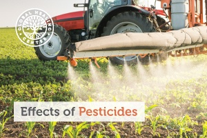 A farmer spreading pesticides on the crops to kill insects, weeds, fungi, and bacteria.