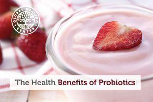 A bowl of organic, strawberry yogurt. Good digestion is one of many health benefits probiotics provide.