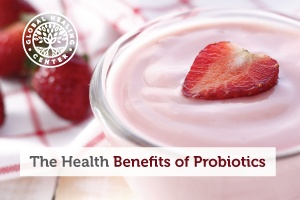 A bowl of organic, strawberry yogurt. Good digestion is one of many health benefits probiotics provide.