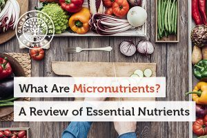 What Are Micronutrients? A Review of Essential Nutrients