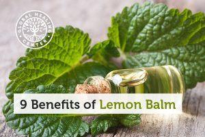 A bottle of Lemon balm oil. Sharp memory and problem-solving are benefits of Lemon balm