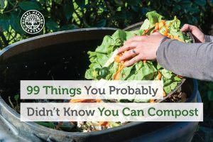 An individual is composting old vegetables. There are tons of items that you may not know you can compost.