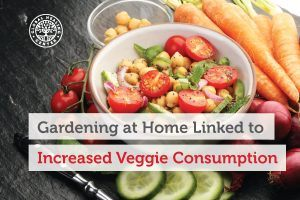 A bowl full of vegetables. Studies show that gardening at home among adults can help with veggie consumption.