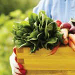 6 Health Benefits of Eating Organic Food