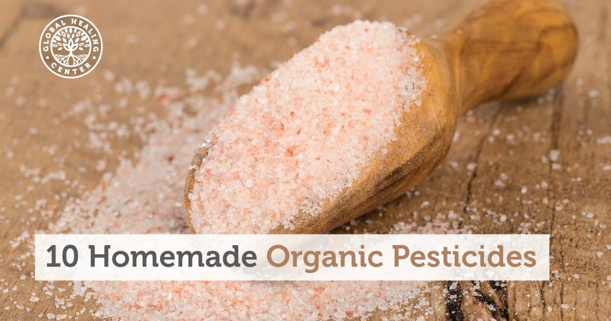 10 homemade organic pesticides - Homemade organic pesticides ...