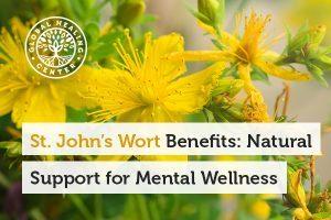 St. John's Wort Benefits: Natural Support for Mental Wellness