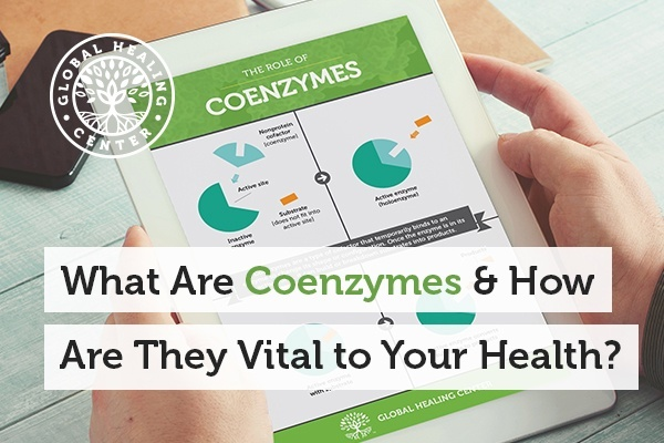 Coenzymes are small molecules that are attached to an inactive enzyme called apoenzyme.