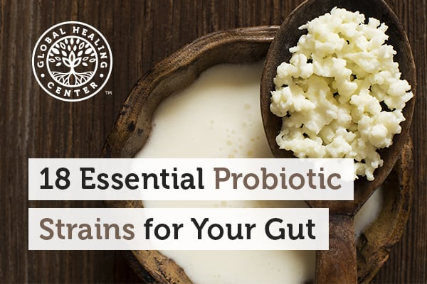 Fermented foods have the best probiotics strains which are beneficial for your gut.
