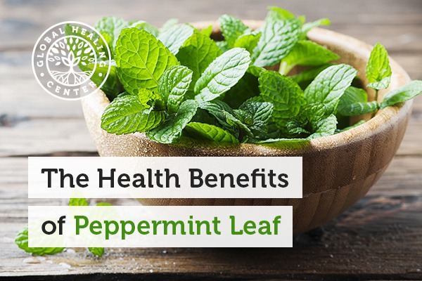 A bowl of fresh peppermint leaves. Vitamins and minerals are one of many benefits of peppermint leaf.