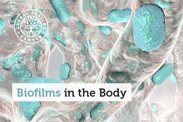 Biofilms form in the different areas like the appendix, mouth, lungs and the colon.