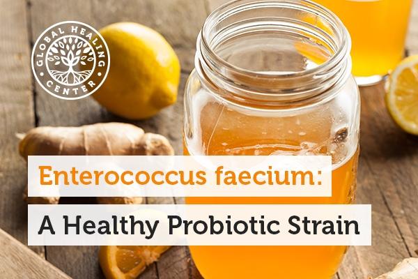 A jar of kombucha. The probiotic Enterococcus faecium helps support gut health.