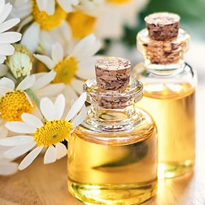 What Are Essential Oils? A Guide from Extraction to Uses