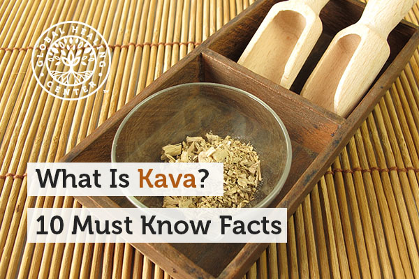 Kava in a glass bowl. This herb provides many health benefits.