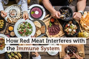 Red meat can affect the immune system.