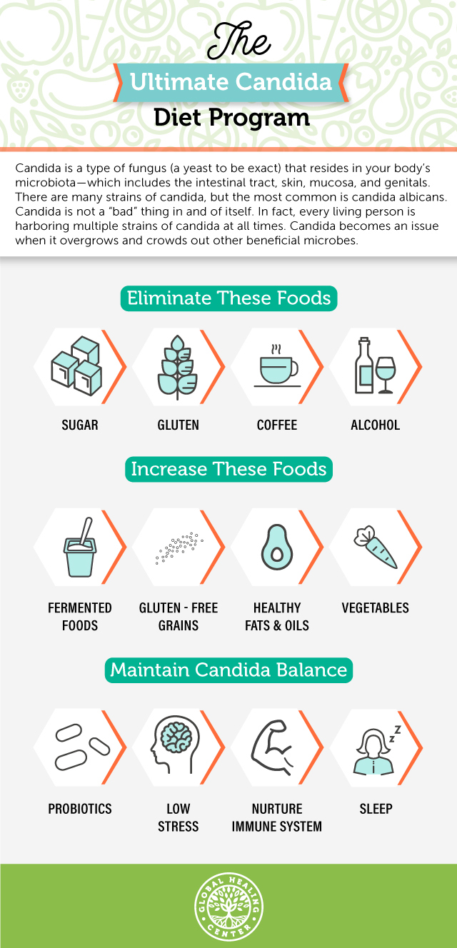 Candida Diet Program Infographic.