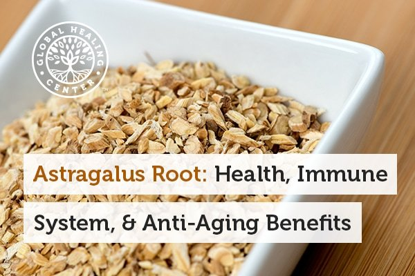 Astragalus root helps support overall wellness.