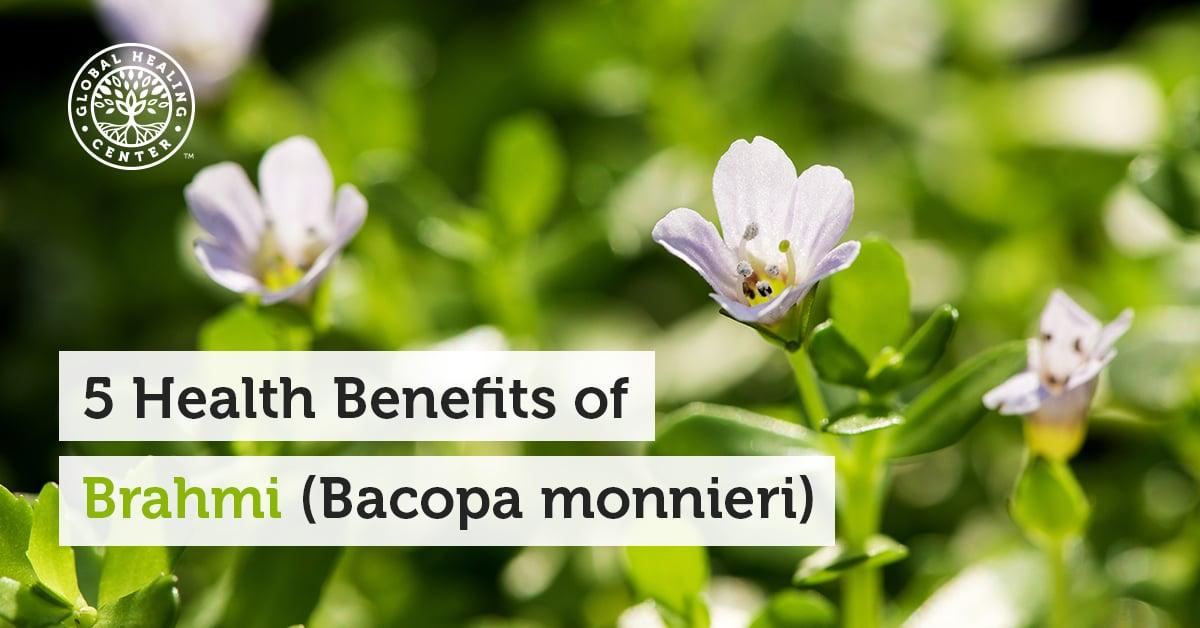5 Health Benefits Of Brahmi