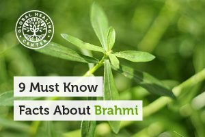 Brahmi (Bacopa monnieri) helps support brain and liver health.