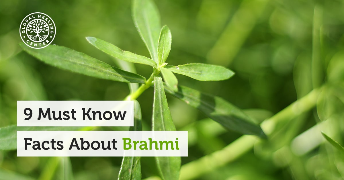 9 Must Know Facts About Brahmi Bacopa Monnieri