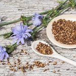 Health Benefits of Chicory Root